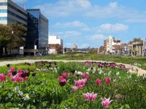 Jardins publics inclus dans le projet du recouvrement de l'autoroute Décarie