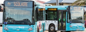 Des bus de transport scolaire Agglo'bus